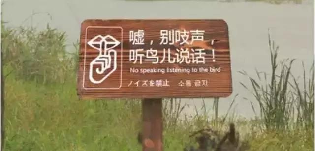 乡村旅游地标识导视怎么搞?